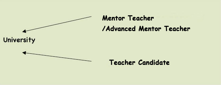 traditional model of teacher preparations